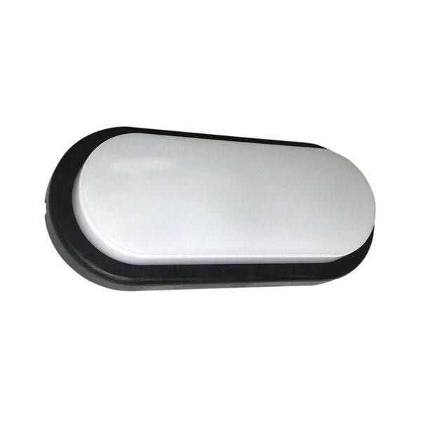 tortuga oval led